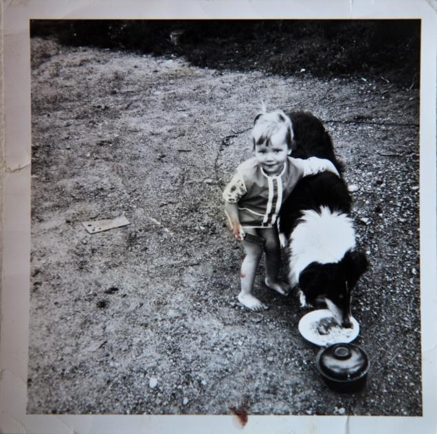 Minä ja koiramme Jani