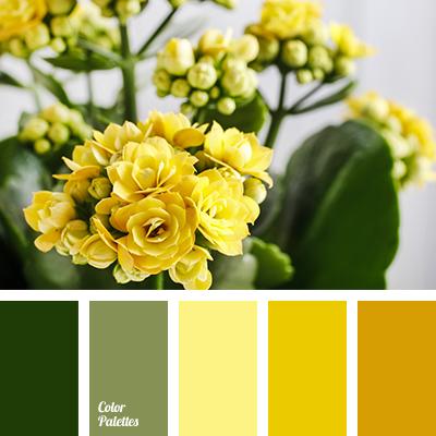color-palette-2872
