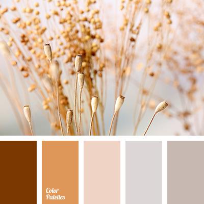 color-palette-2918