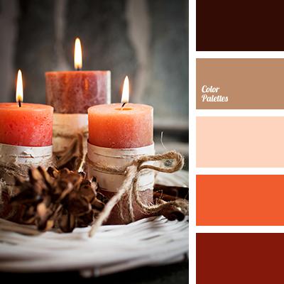 color-palette-3145