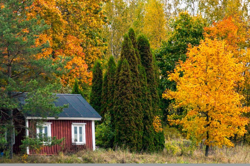 Inkoo vanha mökki ruska lokakuu 2017
