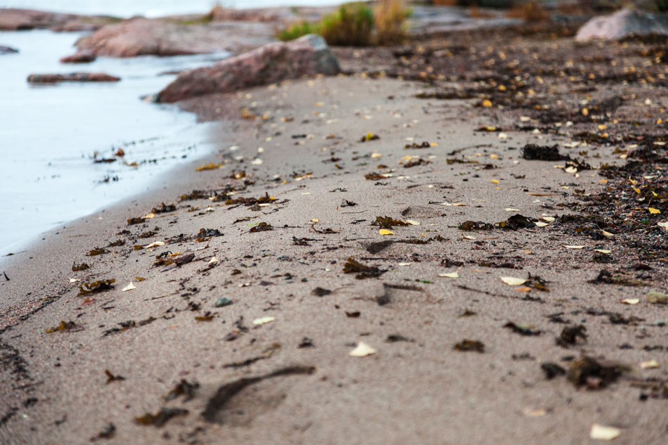 Jäljet hiekalla Toppelundin ranta Haukilahti