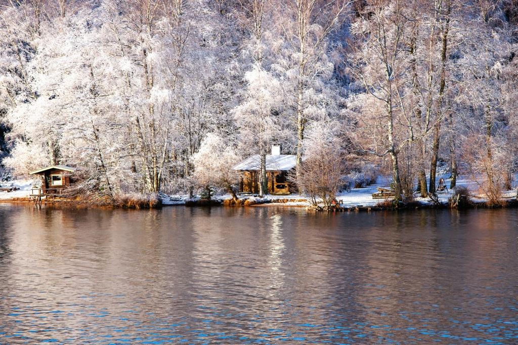 Talvinen maisema, pumpulipuut