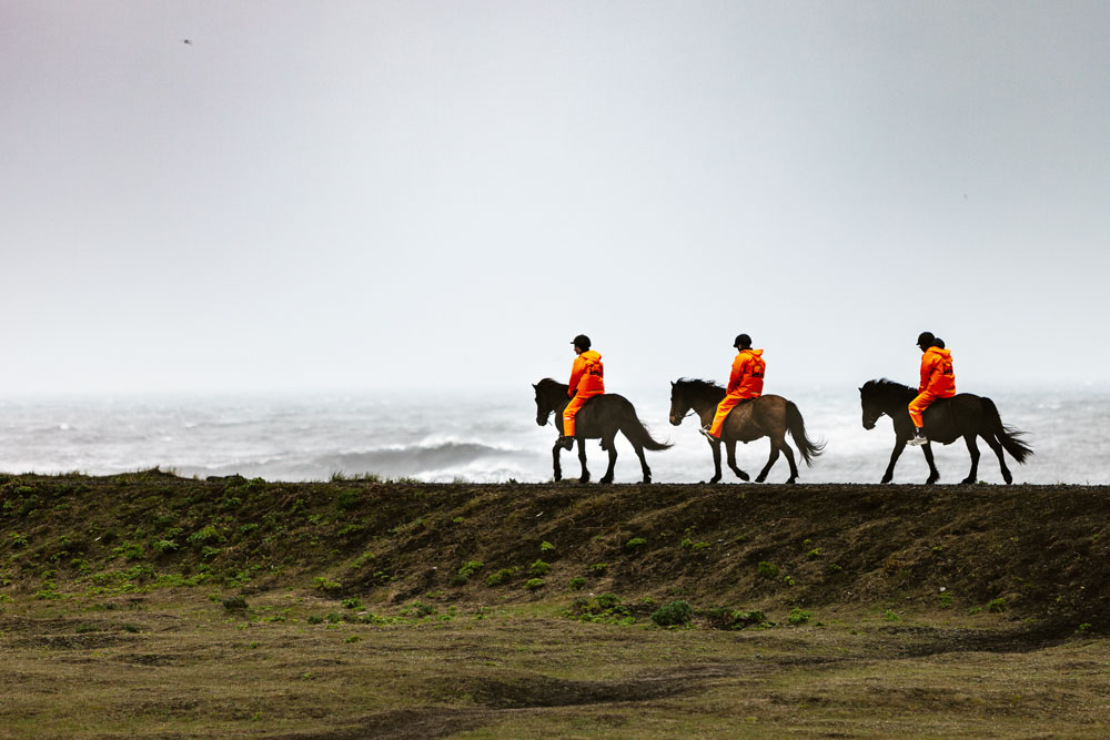 Islanninhevonen vaellus
